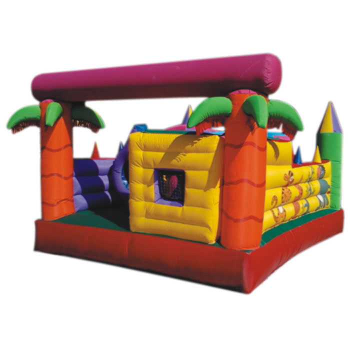 Multi Inflatable manufacturer